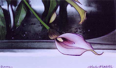 kitchen calla lily photo/drawing - calla lily int the sink