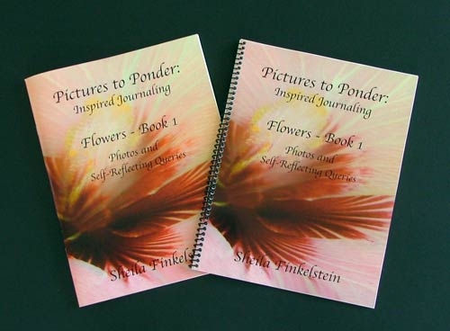 Pictures to Ponder Inspired Journal book covers - saddle stich or spiral bound