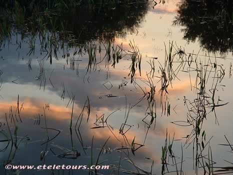 sunset reflections in Wakodahatchee Wetlands