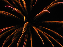 palm frond like imagery in fireworks display