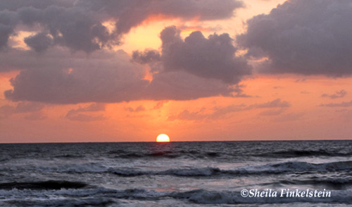 sun jus above the horizon on the Atlantic ocean in viewed from the beach in Daytona Beach, FL
