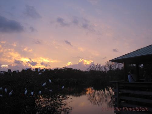 sunrise in Wakodatchee photo 3 on December 29, 2013